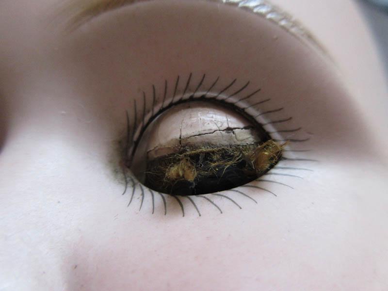 http://www.welkepopisdat.nl/afbeeldingen-Forum/WSK/IMG_3328_ooglidwimpers.JPG