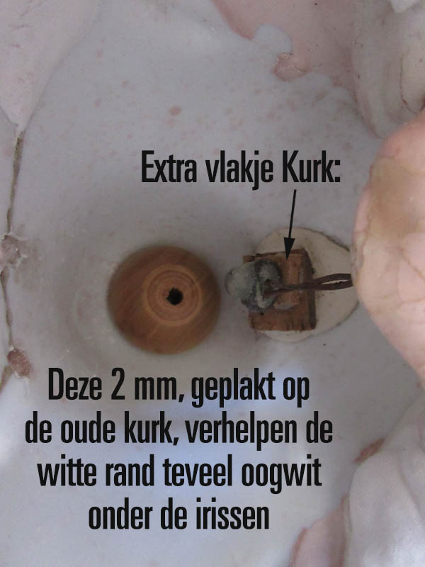 http://www.welkepopisdat.nl/afbeeldingen-Forum/WSK/IMG_3403_kopanker.JPG